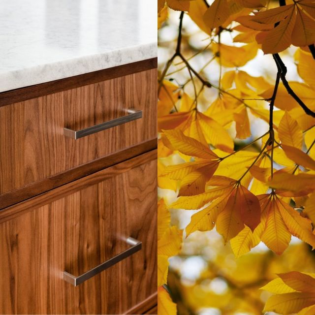 """""""And all at once, summer collapsed into fall."""" - Oscar Wilde  Presenting Cabico cabinetry inspired by your favourite fall details 🍂  What inspires your design choices?  . Featuring: - Natural Walnut with falling leaves - White Dove with decorative gourds - White Oak with a warm latte - Cherry Wood with a pumpkin pile . . . . #HelloCabico #CabicoCabinetry #Cabico #CustomCabinetry #CabicoCustomCabinetry #CustomCabinets #InteriorDesign #Cabinetry #CabinetryDesign #Fall #Autumn #FallDecor #FallTrends #FallDesign"""